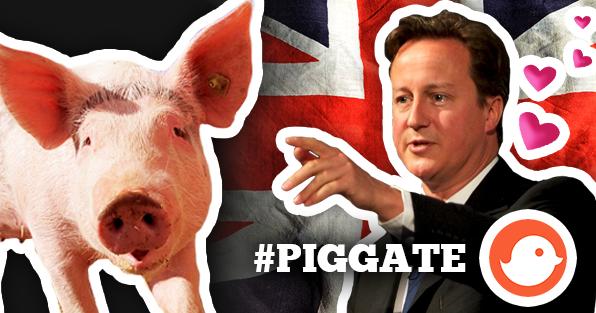 PIGGATE david camerone cochon sélection meilleurs tweets