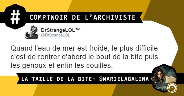 COMPTWOIR_ARCHIVISTE_LA_TAILLE_DE_LA_BITE_TWEETS_DROLES