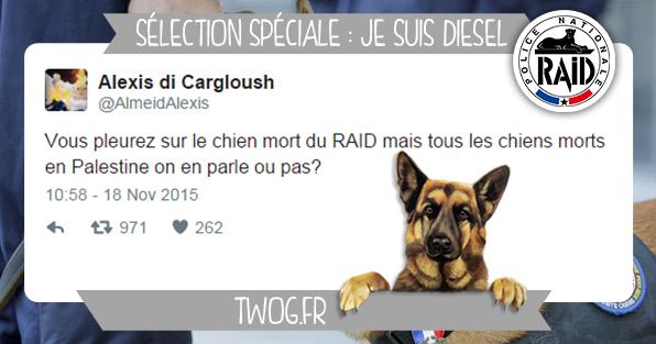 je_suis_chien_diesel_raid_tweet_reaction_twitter