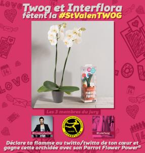 twog_interflora_tweet_saint_valentin_concours_V2