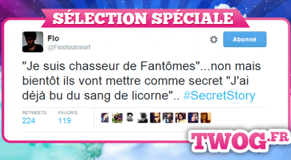 Image de couverture de l'article : Secret Story 9 vu de Twitter