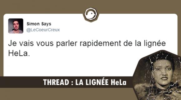 Image de couverture de l'article : Thread : La lignée HeLa