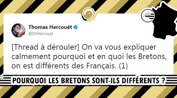 Image de couverture de l'article : THREAD : Pourquoi les Bretons sont-ils différents ?