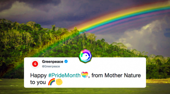 Image de couverture de l'article : Twitter fête le Pride Month