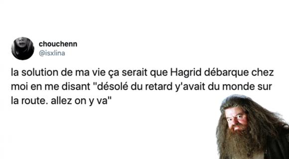 Image de couverture de l'article : Les 18 meilleurs tweets sur Hagrid, ce géant incompris !