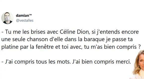 Image de couverture de l'article : Sélection spéciale Céline Dion : les meilleurs tweets