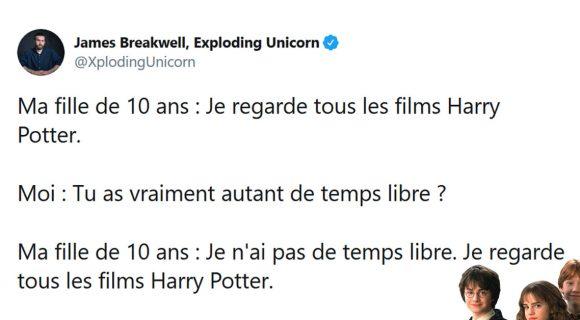 Image de couverture de l'article : Les 20 meilleurs tweets de la semaine sur Harry Potter #7
