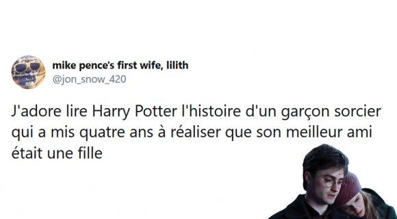 Image de couverture de l'article : Les 20 meilleurs tweets de la semaine sur Harry Potter #11