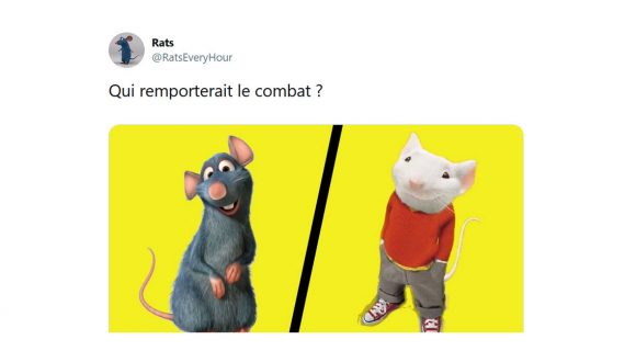 Image de couverture de l'article : Entre Stuart Little et Rémy de Ratatouille : qui gagnerait la bagarre ?