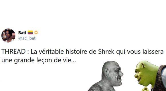 Image de couverture de l'article : Thread : L'histoire vraie dont Shrek s'est inspiré