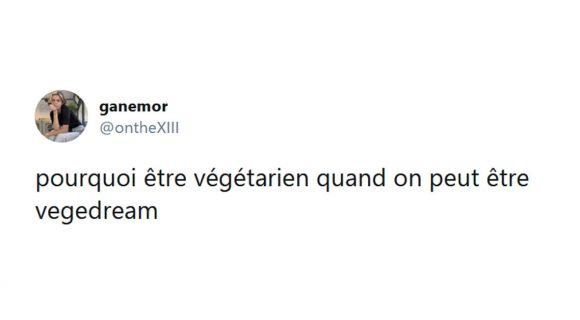 Image de couverture de l'article : Les 18 meilleurs tweets sur les végétariens, non on manque pas de protéines