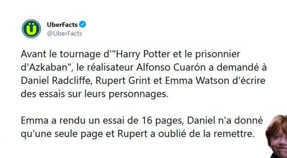 Image de couverture de l'article : Les 20 meilleurs tweets de la semaine sur Harry Potter #29